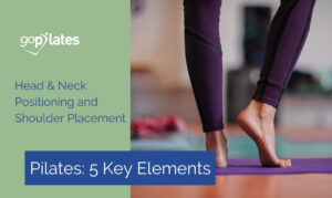 5 Key Elements - Head, Neck and Shoulder Placement